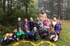 Waldprojekt der VSKL
