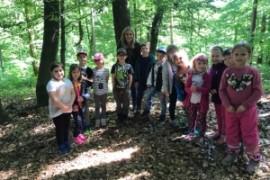 Waldspiele VSKL, 2.b